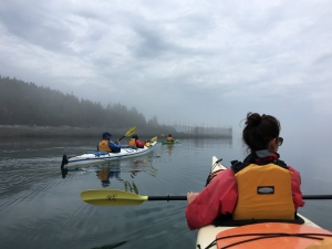 Sea kayaking Deer Island, New Brunswick