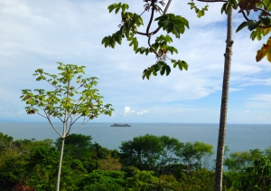 View of Marino Ballena National Park, Costa Rica.