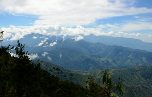 Nature reserve in Colombia.