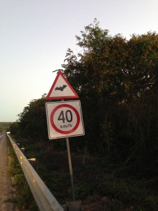 Road sign near Calakmul Bat Cave, Mexico.  Drivers are encouraged to slow down at dusk as bats cross the highway.