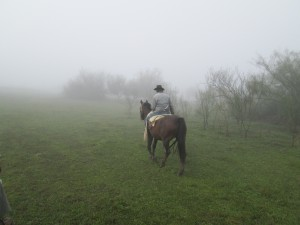 Argentina guided tour gaucho Reefs to Rockies