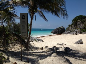 Turtle nesting beach at Tulum.  This beach is closed to visitors.