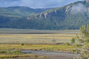 guided tours Yellowstone