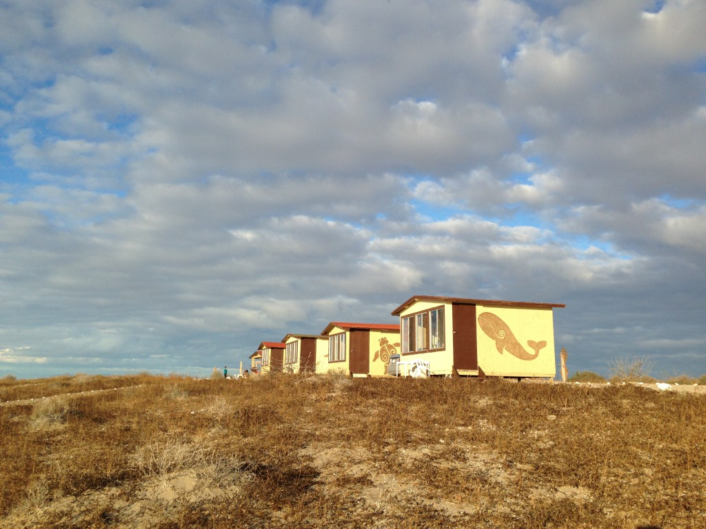 Pachico's cabins