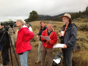 Our group watching and learning about the Junction Butte wolf pack.