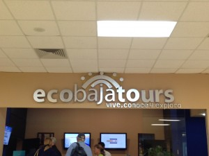 EcoBajaTours office in Terminal 1 at the San Jose del Cabo (SJD) Airport.