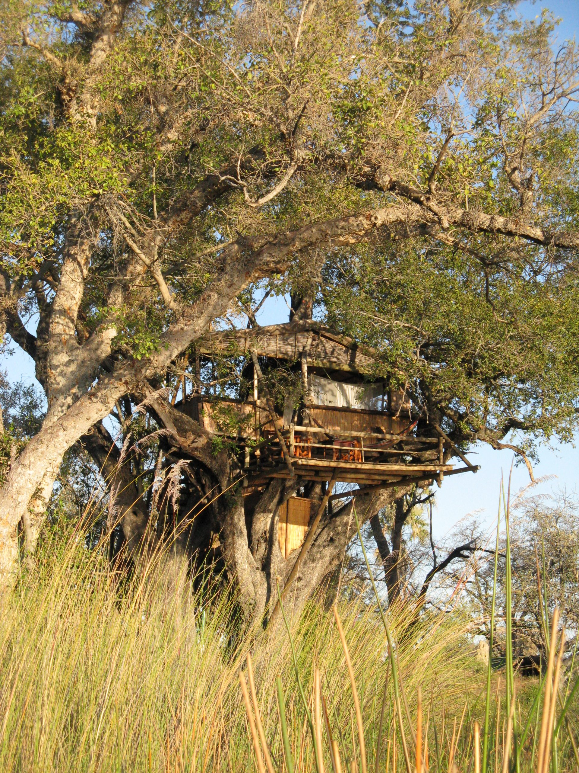 Tree House chalet at Delta Camp