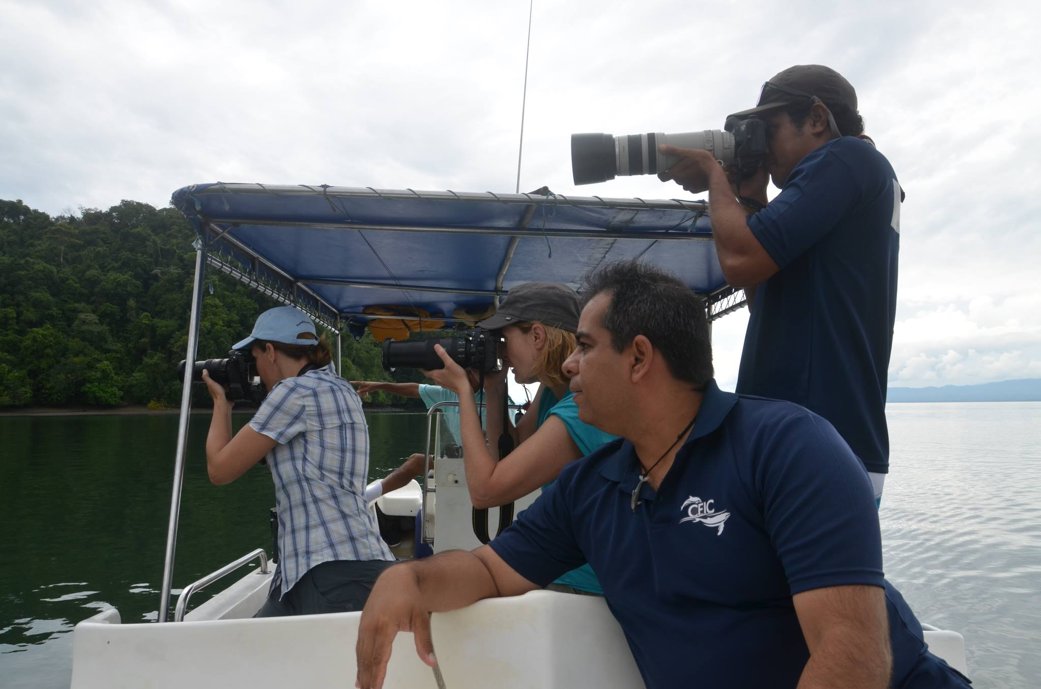 CEIC researchers and Reefs to Rockies co-founders observing bottlenose dolphins feeding in Golfo Dulce.