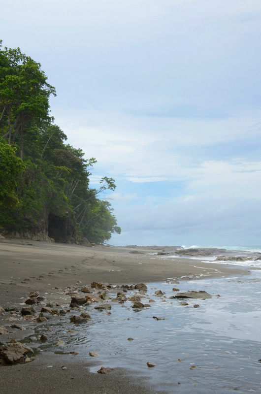 Osa Peninsula beach near El Remanso Lodge.